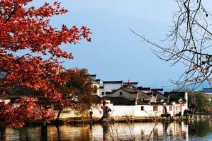 黄山、醉温泉、宏村、屯溪老街巴士3日跟团游(性价比高,体验度好的线路【跟团游特卖】)