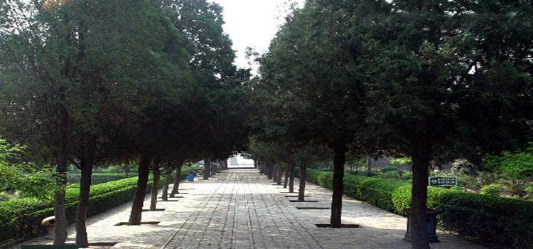运城运城夏县司马光墓攻略 地址 介绍 在哪里 景点好玩吗图片