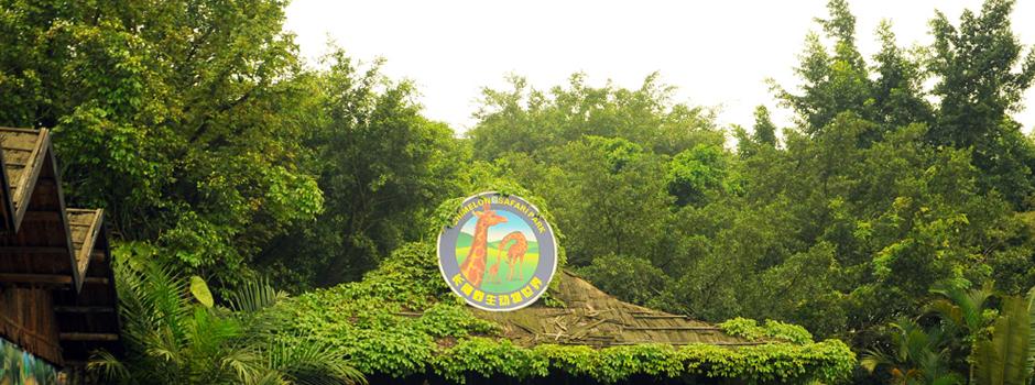珠海长隆海洋王国,广州长隆野生动物园4日双飞跟团游
