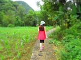 【边关画廊】德天瀑布、通灵大峡谷2日游,大美观德天 山水秀通灵 《花千骨》取景之地