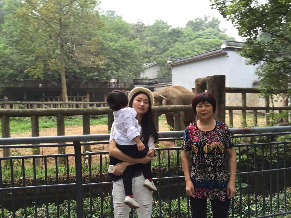 杭州动物园 成人票