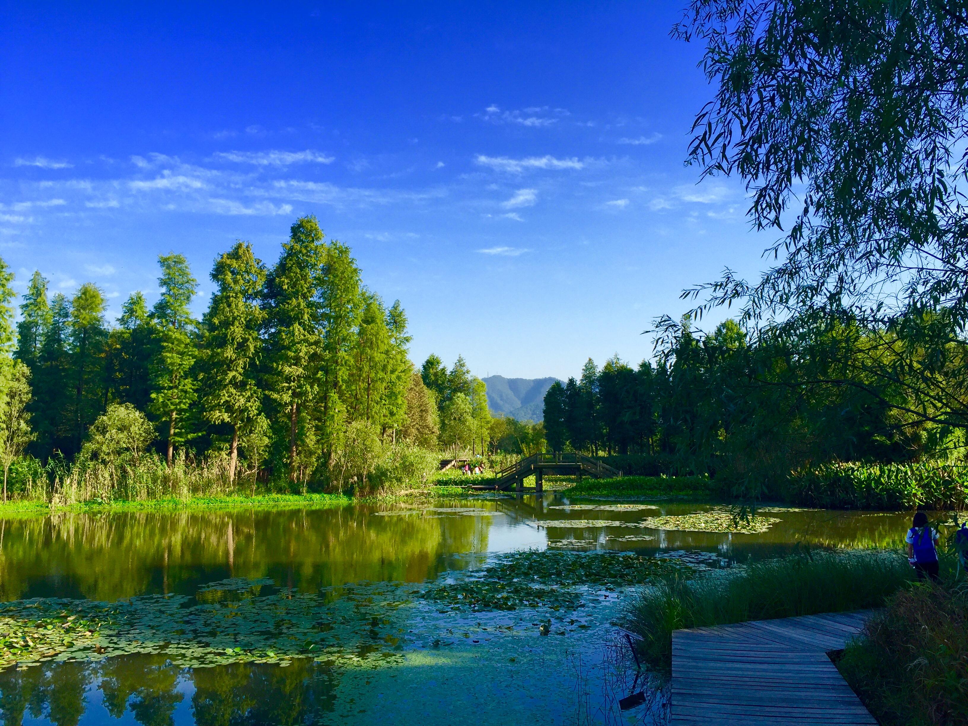 杭州湿地公园门票-杭州西溪湿地门票,西溪湿地公园门票,杭州西溪湿地公园,杭州湿地公园好玩吗