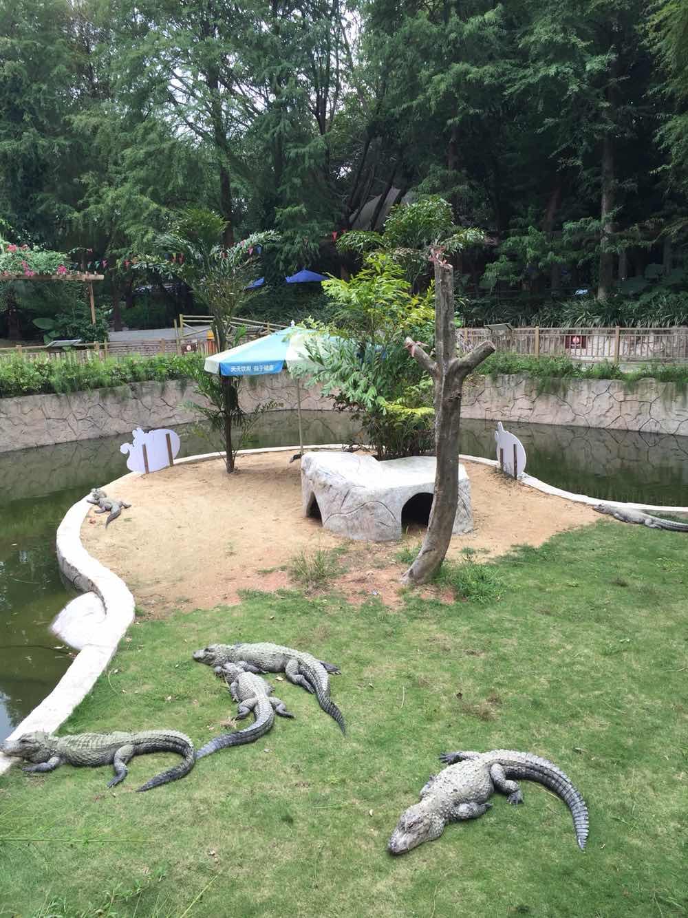深圳野生动物园 酒店 图片合集
