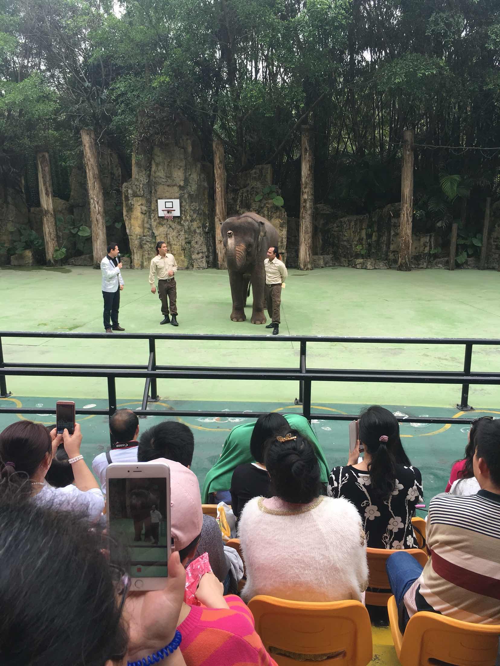长隆野生动物园酒店_贵阳扎佐野生动物园
