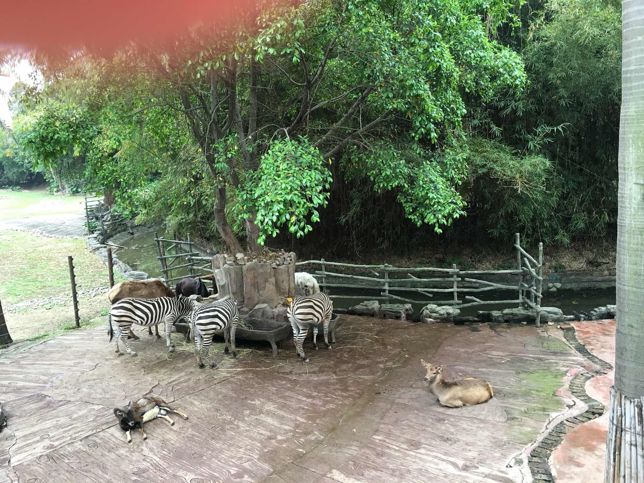 顺德长鹿休闲度假农庄