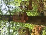【性价比之王】住黄家花园+东滩湿地公园/东平国家森林公园/江南三民文化村/明珠湖公园(景点4选1)