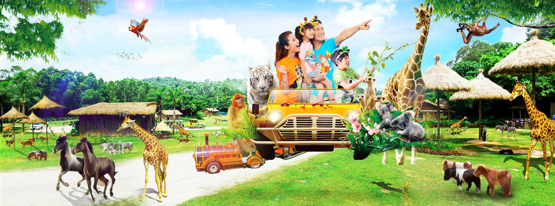 深圳至广州长隆水上乐园,长隆野生动物世界,长隆国际大马戏2日跟团游