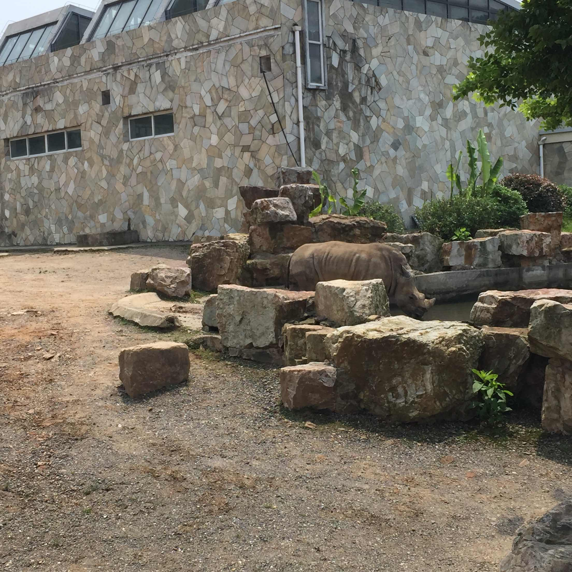 无锡动物园·太湖欢乐园   无锡动物园成人当日票【请在驴妈妈工作