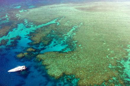 澳大利亚 凯恩斯 大堡礁9日游