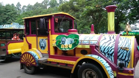 广州长隆野生动物园   (8.28周年庆特惠)动物世界-成人票