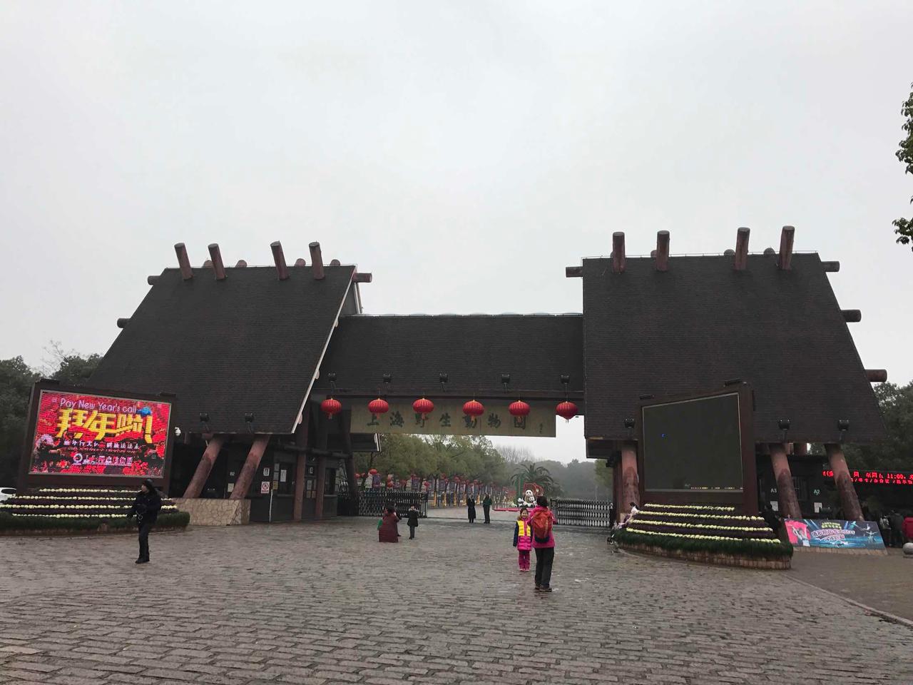 上海野生动物园   骑乘大象亲吻海狮体验成人套票(含入园票 猛兽区