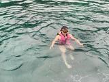 【开心驴行】泰国普吉岛5晚7日深度游(无自费,2晚万豪或同级,2晚泳池别墅,海豚表演,帆船海钓,赠跟拍★★★★★)