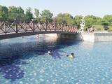 上海月湖雕塑公园