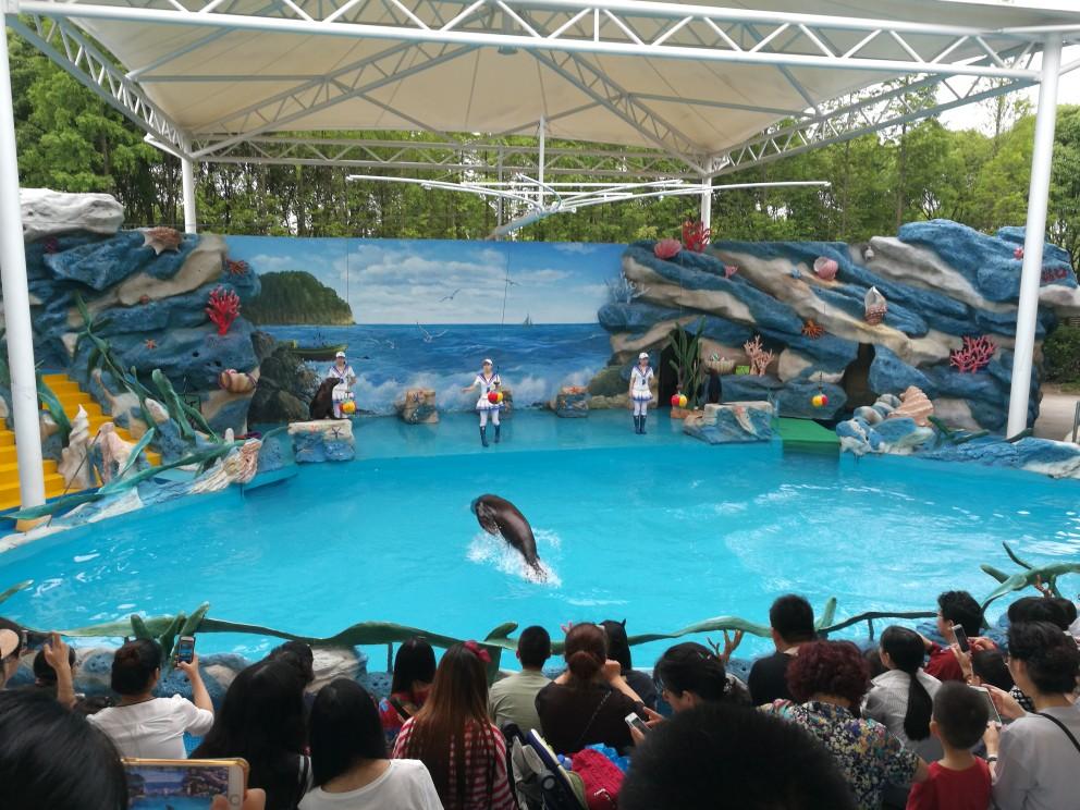 上海野生动物园   学生票(包含猛兽区大巴游览) 成人票(包含猛兽区