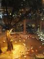 【广进珠出】【含接机】长隆双飞5日4晚自由行(长隆主题特色酒店连住,住2晚广州长隆酒店,2晚企鹅酒店,含野生动物世界,海洋王国门票)