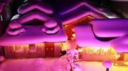 【雪遇】哈尔滨、亚布力、元茂屯、雾凇双飞7日跟团游(哈尔滨,亚布力,雪乡,镜泊湖,长白山,露水河,吉林雾凇岛,东北全景,超级体验,带您体验亚布力激情滑雪,元茂屯特色、矿泉水漂流、全程纯玩无购物,真正来一次酣畅淋漓的东北冰雪时光)