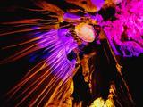 桂林、阳朔、漓江、龙脊、象鼻山双飞5日深度游([纯玩·精致团  四星船 1晚豪华大公馆  高餐标]4人豪赠音响,赠精致下午茶、大型演出-《山水间》、5A王府,车载WiFi,豪礼相伴 精华全含)