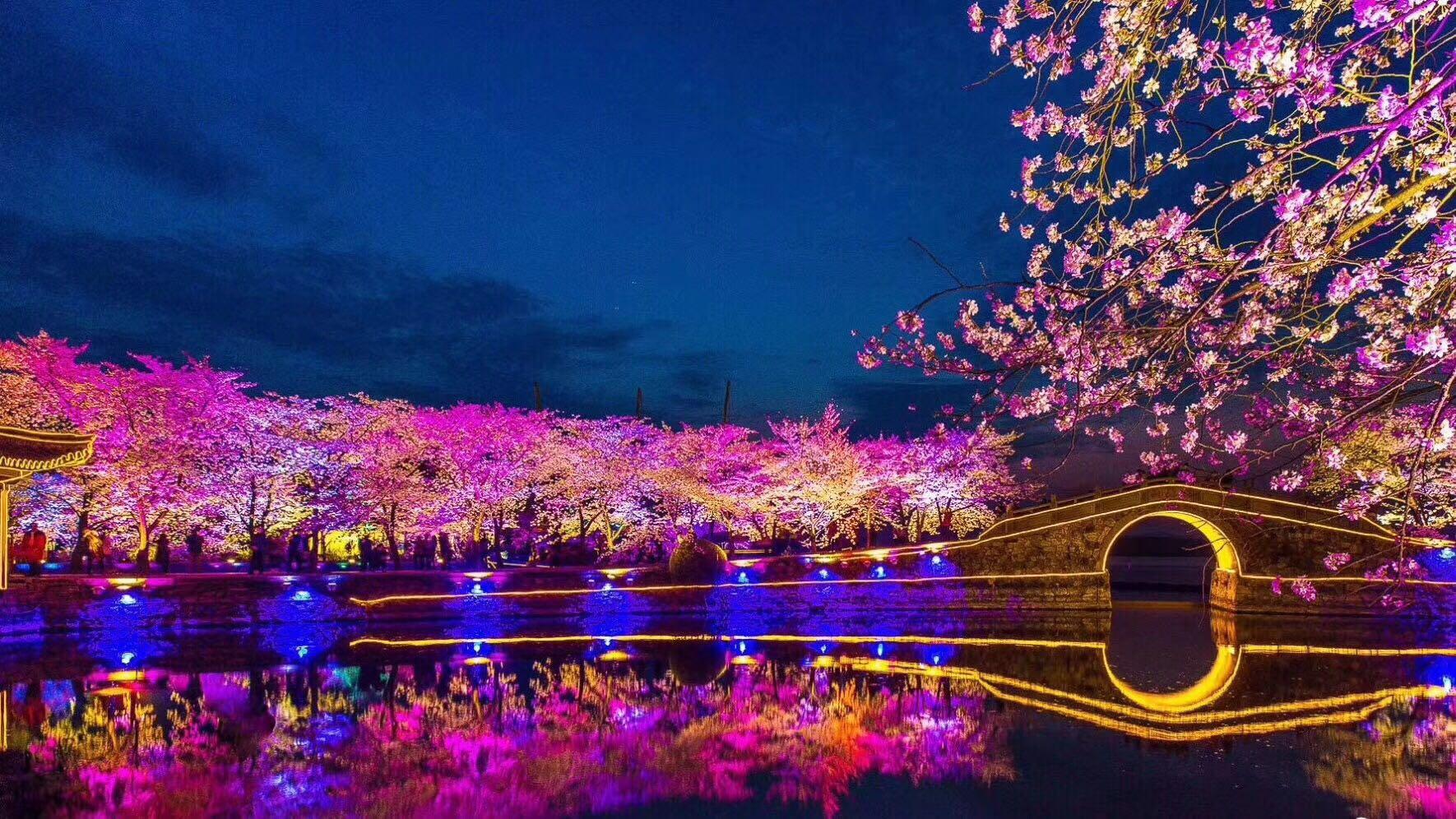从3月24日至4月12日,无锡太湖鼋头渚景区樱花谷的国际风情大舞台将在