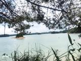 千岛湖森林氧吧纯玩巴士2日跟团游([【暑期特卖】]宿千岛湖五星·绿城度假湖景房,高端度假,无购物)