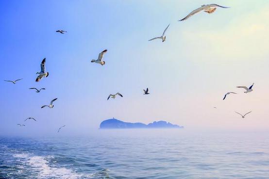 2019威海旅游攻略_威海自助游周边/成就攻略攻略ds自驾图片