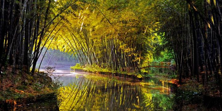 上海淀山湖森林公园_苏州2天1晚住同里湖度假村二期1晚+双早+恒温泳池室内外儿童