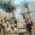 【魔都科技馆亲子游】住1晚开元曼居酒店(上海新国际博览中心店)(原上海开元曼居酒店(罗山店))+上海科技馆门票2张,带上孩子一起来探索自然与科技的奥秘!