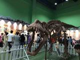 常州2天1晚【探秘奇幻侏罗纪恐龙世界】常州环球恐龙城恐龙主题度假酒店(含早)+恐龙园门票/酒店自助晚餐(二选一)+赠恐龙人俱乐部5选1门票