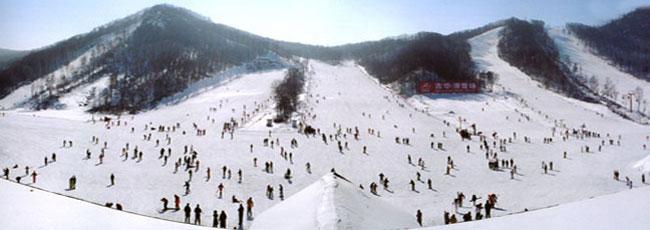 滑雪场 [·]       总体评价